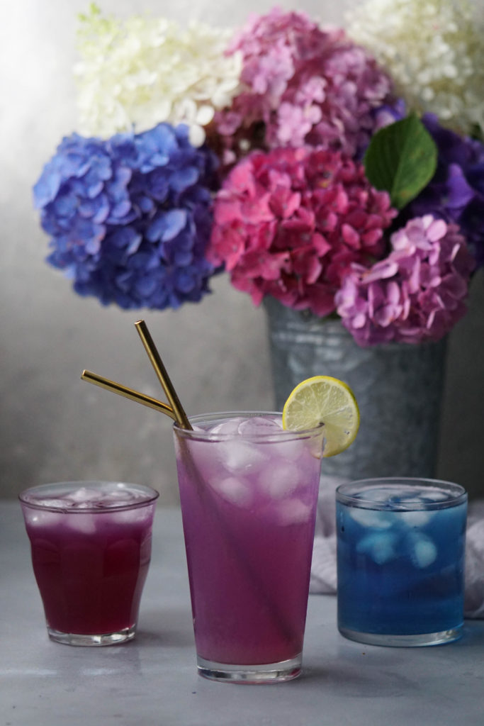 butter fly pea flower tea in various colors with hydrangea in the background