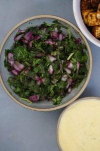 fresh mint and cilantro salsa