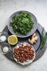 Ingredients of coriander chutney arranged on a steel gray plate